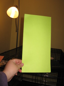 Fold the piece of paper to form a card.