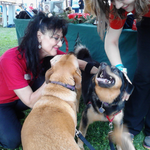 Brenda from Camp Bow Wow is a long-time networking friend of mine and was pleased to say hi to the girls. They loved it (including the treats)!