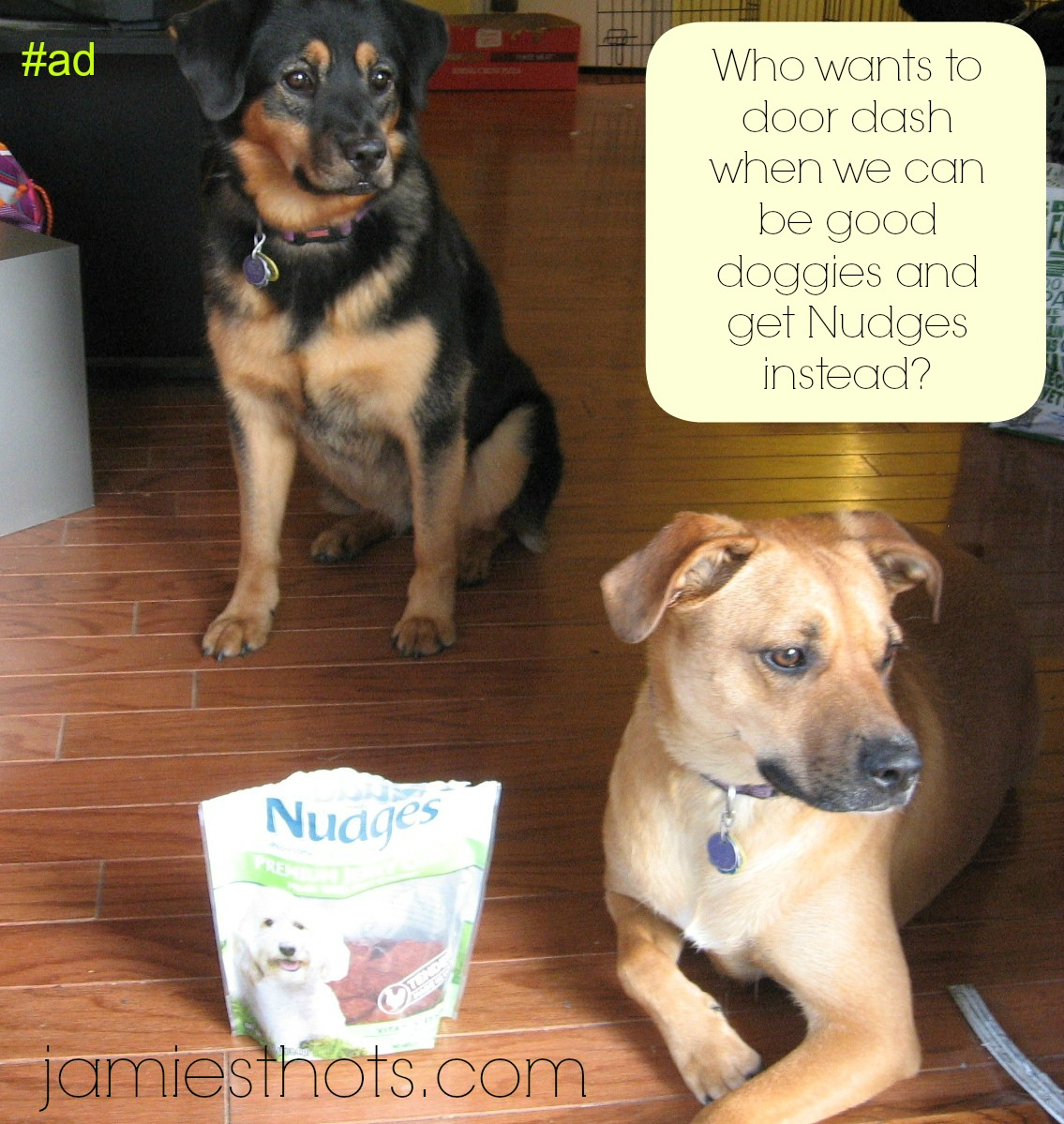 Keeping the Smith puppies safe on Independence Day with Nudges dog treats