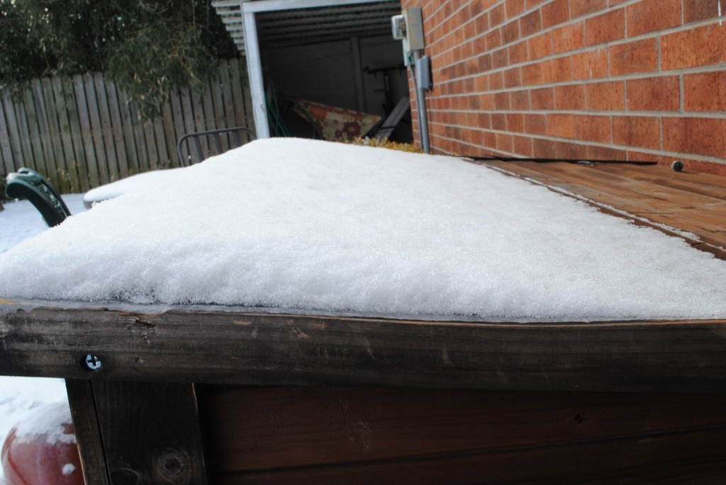 The top of the dog house. We obviously got very little snow.