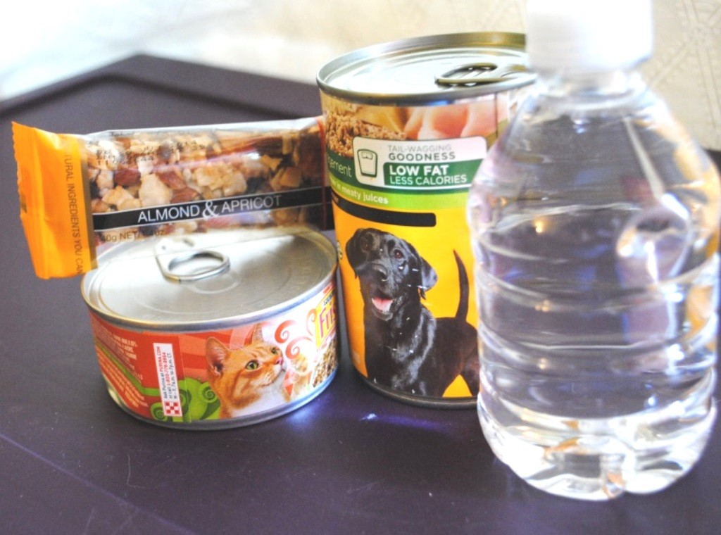 You also need food and water for the whole family. If you have pets, I suggest canned food because it has more moisture and is easier to store in the cans.