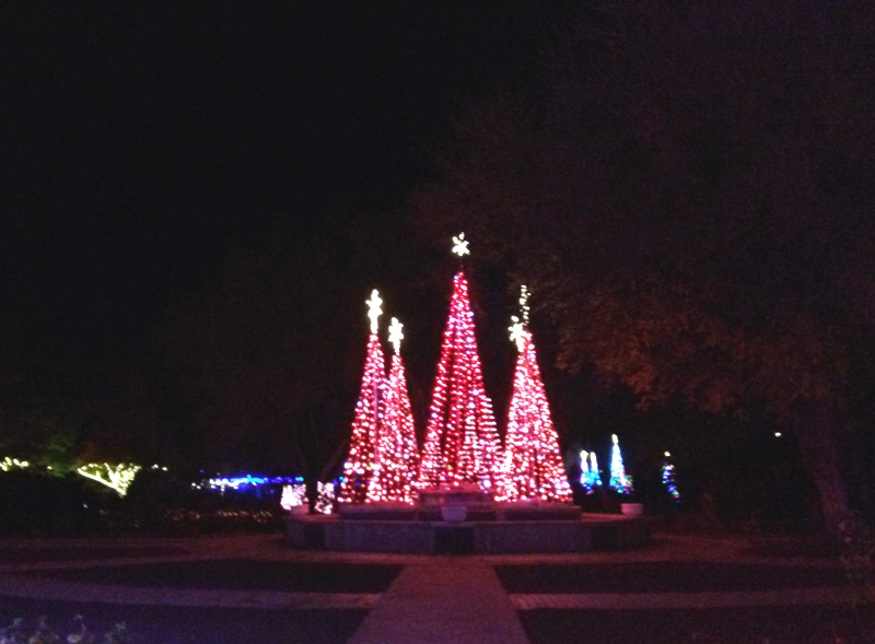 Some of the displays are traditional like the three Christmas trees that change color to the music. They had different versions of this throughout the park and they were my favorite for their simplicity.